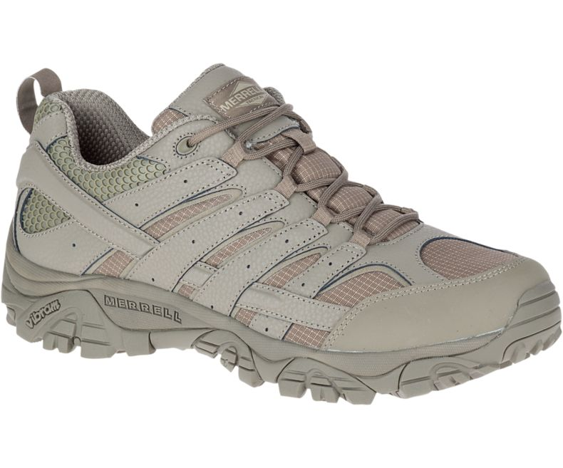 Men's Moab Tactical Shoe